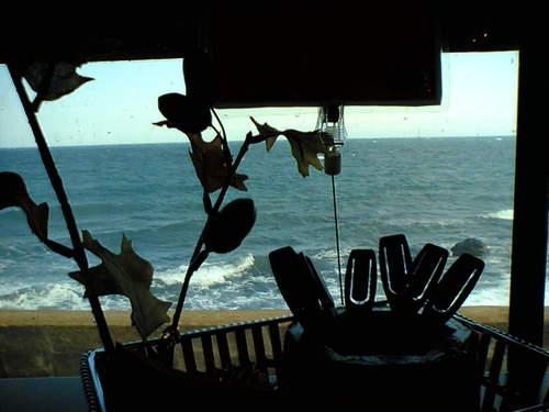 小樽の海を車窓から